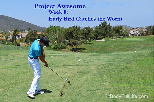 Project Awesome Week 8: Early Bird Catches the Worm