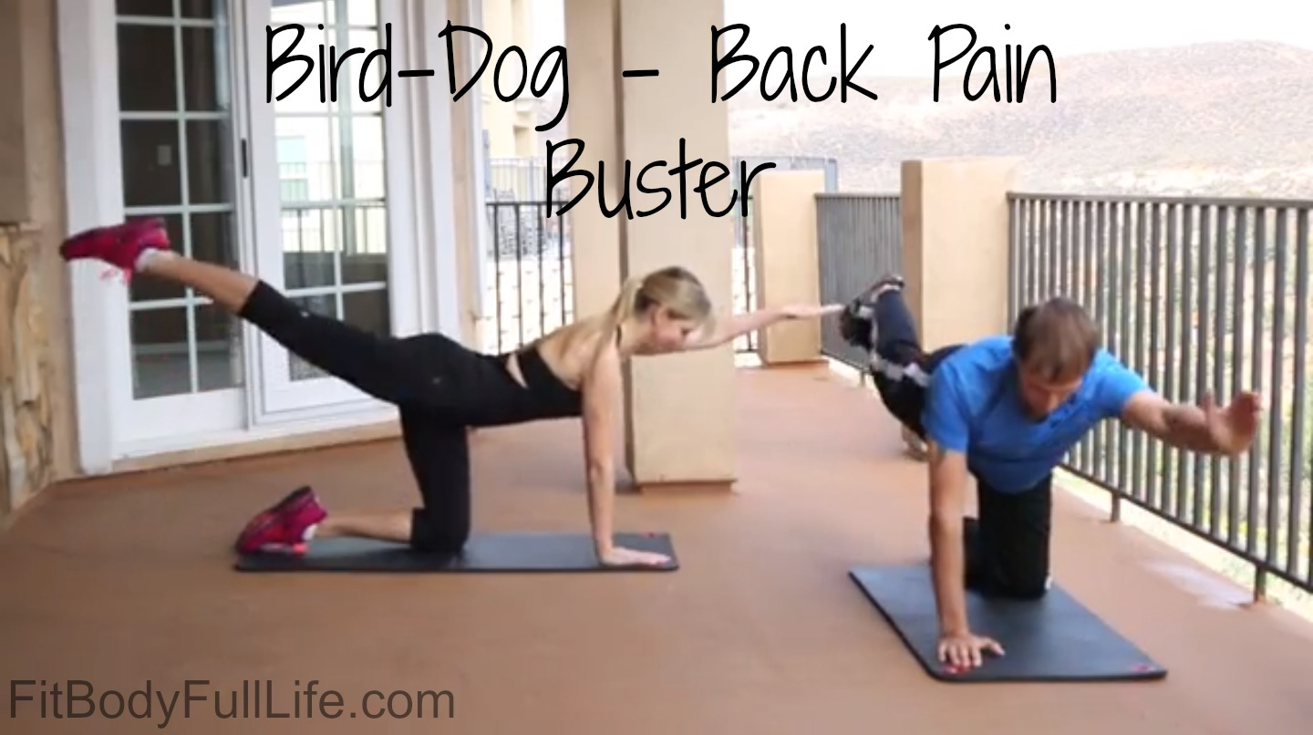 Bird-Dog - Back Pain Buster