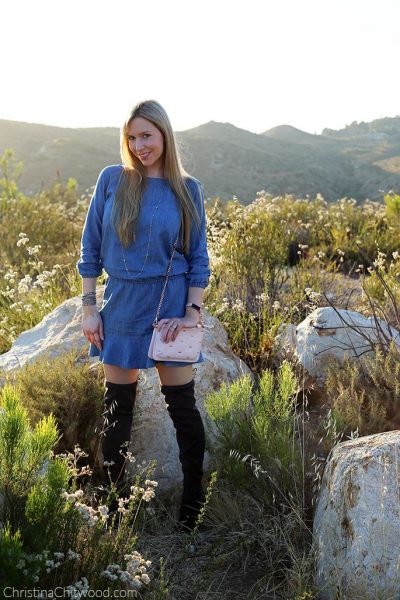 Joie Dress, Marc Fisher Boots, and Ted Baker Handbag - 1