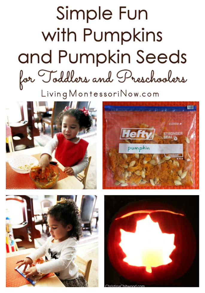 Simple Fun with Pumpkins and Pumpkin Seeds for Toddlers and Preschoolers
