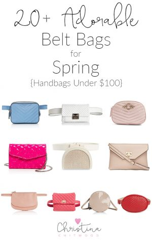 20+ Adorable Belt Bags for Spring {Handbags Under $100}